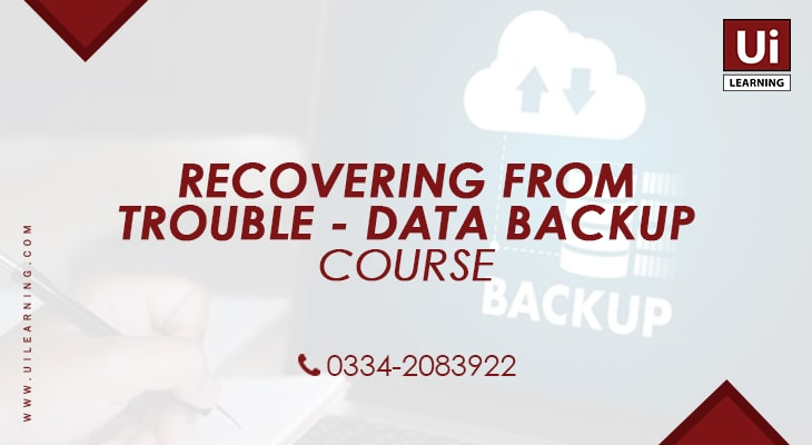 UI Learning Institute offering Data Backup Training Course for IT Professionals