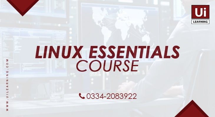 UI Learning Institute offering Linux Essentials Training Course for IT Professionals