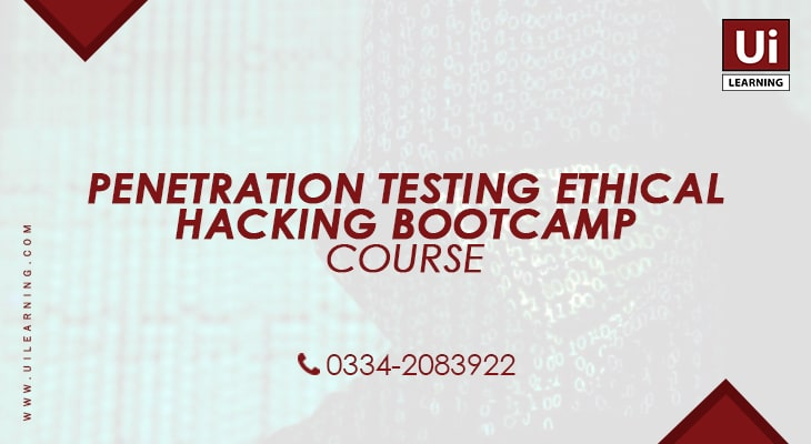 UI Learning Institute offering Penetration Testing Training Course for IT Professionals
